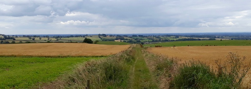 View of bridleway near Thornton Lodge