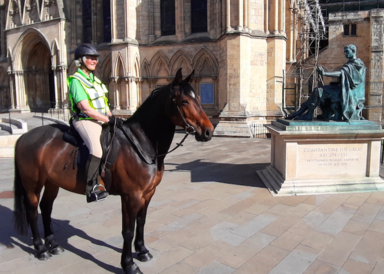 Janet & Scout at York Minster during 2020 lockdown